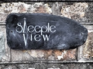 steeple-view